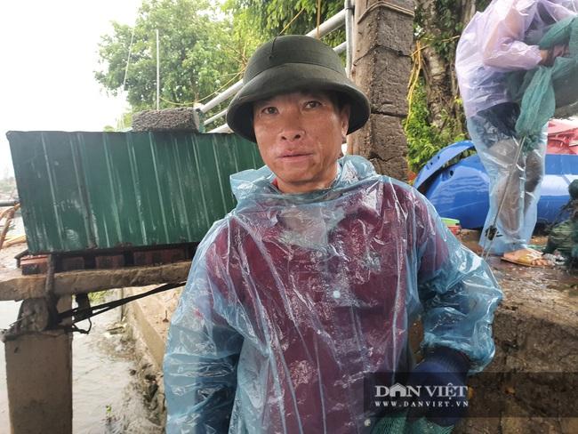 Hà Tĩnh: Ngư dân nuôi cá lồng bè khẩn trương ứng phó với bão số 5 - Ảnh 2.