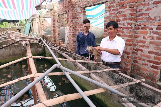 Nông nghiệp công nghệ cao nở rộ, Sóc Sơn cán đích huyện NTM nay nay - Ảnh 3.