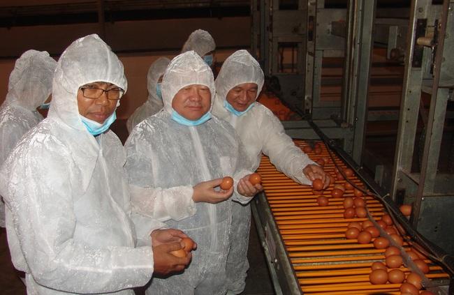Có gì ở trang trại gà lấy trứng DHA Omega3 khiến Chủ tịch Hội Nông dân Việt Nam khen tắm tắc? - Ảnh 1.