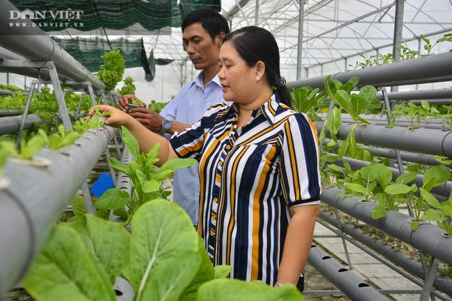 Kiên Giang có 55.000 hộ nông dân sản xuất kinh doanh giỏi mỗi năm - Ảnh 1.