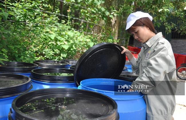 Người biến rác thải nông nghiệp thành nước tẩy rửa - Ảnh 4.