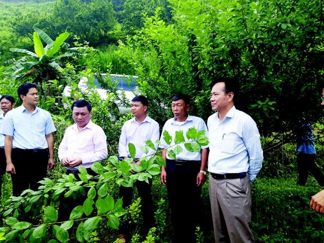 Sau 10 năm xây dựng nông thôn mới, Hà Giang rút ra điều gì? - Ảnh 1.