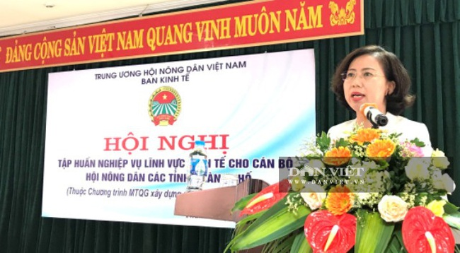 Trung ương Hội tập huấn nghiệp vụ lĩnh vực kinh tế cho các bộ Hội Nông dân các tỉnh, thành phố trong cả nước - Ảnh 2.