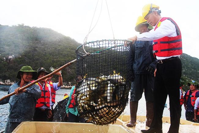 Xây dựng chiến lược phát triển thủy sản: Tăng đào tạo, tính chuyên nghiệp và liên kết  - Ảnh 4.