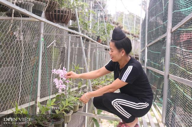 Gái Thái thu hơn 500 triệu đồng mỗi năm từ trồng lan rừng - Ảnh 6.