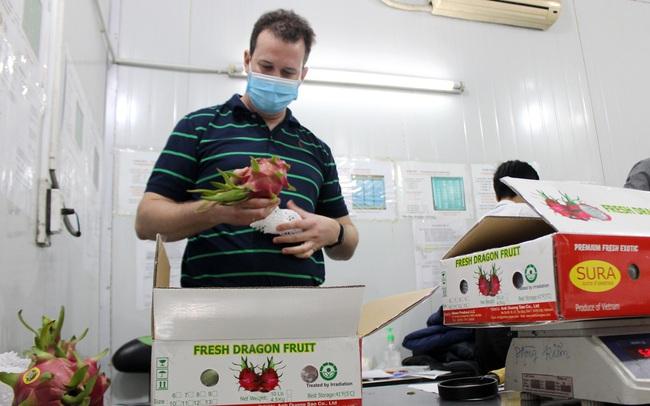 Xuất khẩu trái cây sang Mỹ: Tin vui nối tiếp tin vui - Ảnh 4.