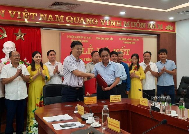 Ninh Bình sẽ cung ứng và quản lý chất lượng giống nhuyễn thể cho Quảng Ninh - Ảnh 2.