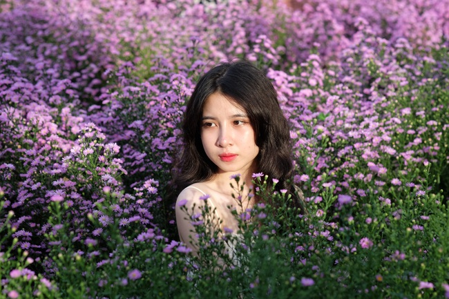 Mê mẩn vườn hoa thạch thảo được trồng đầu tiên tại Đà Nẵng - Ảnh 1.