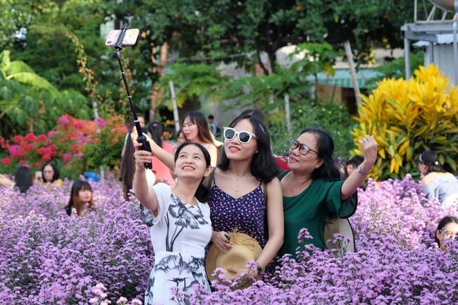 Mê mẩn vườn hoa thạch thảo được trồng đầu tiên tại Đà Nẵng - Ảnh 7.