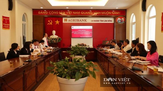 Tháo gỡ vướng mắc về bảo hiểm nông nghiệp tại Lâm Đồng - Ảnh 1.
