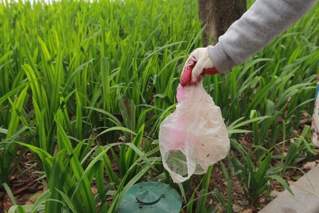 Green Life và Wiibike Việt Nam tổ chức đạp xe trợ lực điện thu gom rác tại Bờ Hồ - Ảnh 3.