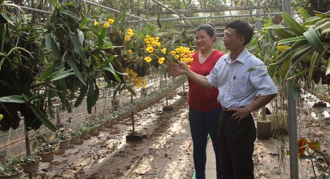 Tổng kết 10 năm Đề án đổi mới và nâng cao hoạt động Quỹ HTND: Nguồn lực lớn tạo sức bật cho nông dân - Ảnh 1.
