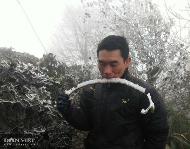 Ảnh: Băng tuyết xuất hiện trắng xóa trên đỉnh núi Tà Xùa - Ảnh 10.