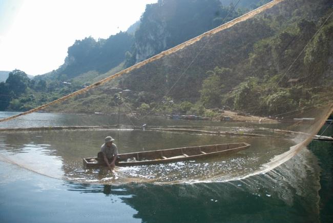 """Điện Biên: Mưu sinh bằng nghề săn """"thủy quái"""" trên sông Đà, từng bắt được 1 con 50kg sau 3 tiếng """"vật lộn"""" - Ảnh 1."""