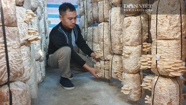 Thái Bình: Khấm khá nhờ trồng nấm sạch, mỗi năm bỏ túi hàng trăm triệu đồng - Ảnh 1.