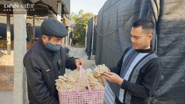 Thái Bình: Khấm khá nhờ trồng nấm sạch, mỗi năm bỏ túi hàng trăm triệu đồng - Ảnh 2.