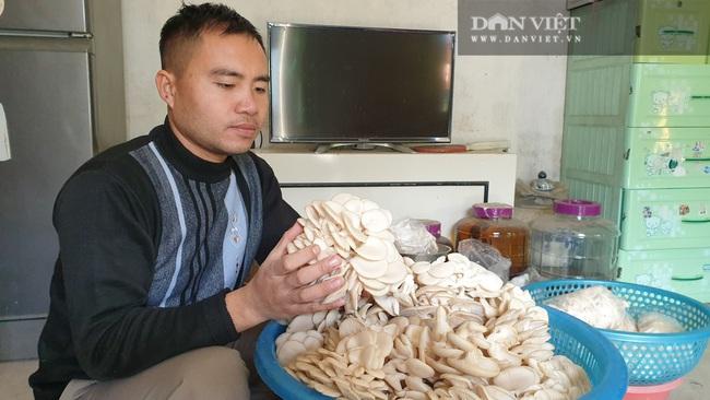 Thái Bình: Khấm khá nhờ trồng nấm sạch, mỗi năm bỏ túi hàng trăm triệu đồng - Ảnh 4.