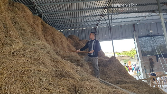 Thái Bình: Khấm khá nhờ trồng nấm sạch, mỗi năm bỏ túi hàng trăm triệu đồng - Ảnh 3.
