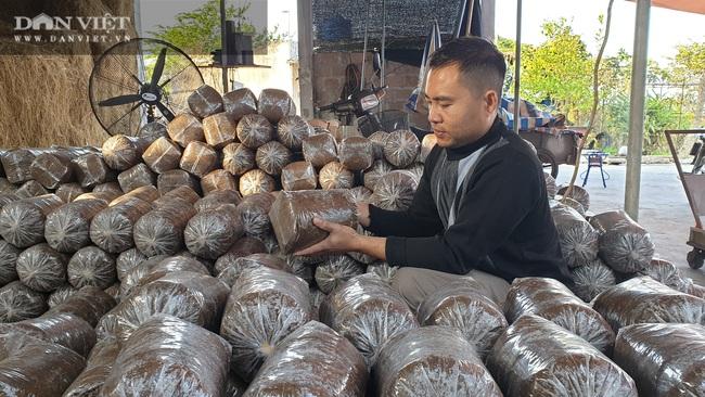 Thái Bình: Khấm khá nhờ trồng nấm sạch, mỗi năm bỏ túi hàng trăm triệu đồng - Ảnh 6.