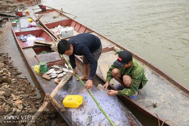 Đánh cá trong thời tiết rét buốt, ngư dân vẫn đút túi 1 triệu đồng/ngày - Ảnh 4.