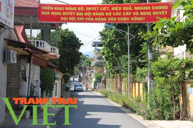 Lương Sơn xây dựng đồng bộ đường giao thông nông thôn - Ảnh 2.