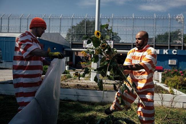 10 nhà tù đáng sợ nhất thế giới: Có nơi tù nhân xin được tử hình - Ảnh 10.
