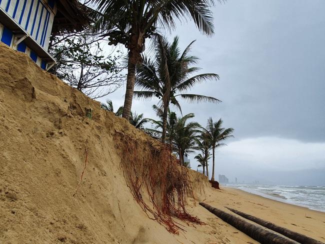 Đà Nẵng nói gì về tình trạng bờ biển bị xói lở? - Ảnh 1.