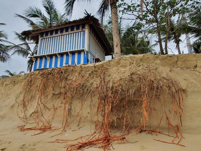 Đà Nẵng nói gì về tình trạng bờ biển bị xói lở? - Ảnh 2.