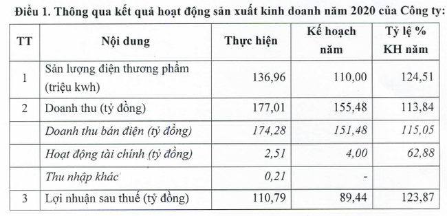 Điện Miền Trung (SEB) năm 2020 đạt 111 tỷ đồng lợi nhuận vượt 24% kế hoạch năm - Ảnh 1.
