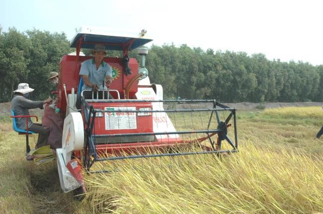"""Tỉnh du lịch, dầu khí hối hả thúc doanh nghiệp """"bắt tay"""" tiêu thụ nông sản cho nông dân - Ảnh 3."""