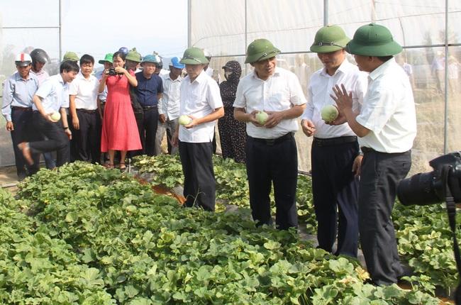 Hội Nông dân Nghệ An: Lá cờ đầu trong công tác Hội và phong trào nông dân   - Ảnh 2.
