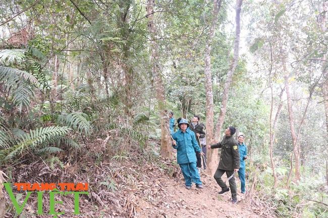 Mường La chủ động phòng cháy, chữa cháy rừng - Ảnh 1.