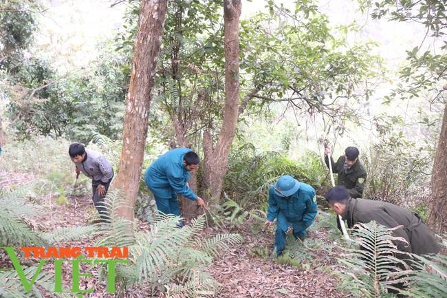 Mường La chủ động phòng cháy, chữa cháy rừng - Ảnh 2.