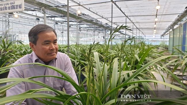 Nam Định: Địa lan quý giá chục triệu mỗi chậu, sợ hết, khách đến tận vườn ghi tên đánh dấu - Ảnh 7.