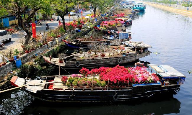 """TP.HCM: Chợ hoa """"trên bến dưới thuyền"""" bến Bình Đông sắp họp, năm nay có điểm đặc biệt - Ảnh 1."""