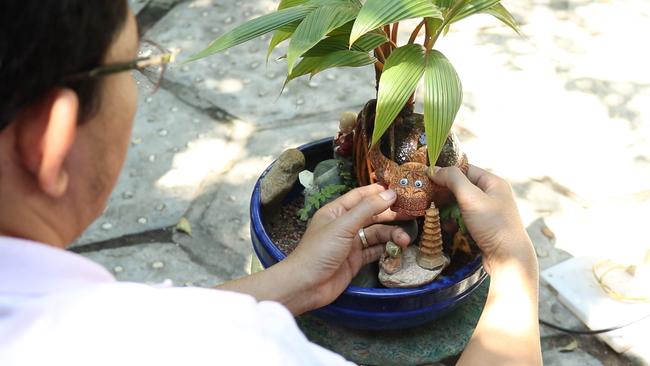 Độc đáo bonsai dừa có hình trâu đón Tết Tân Sửu 2021 tại TP.HCM - Ảnh 2.