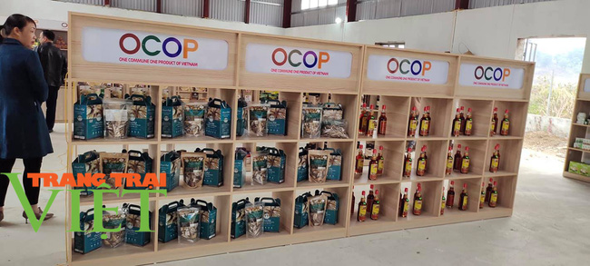 Khai trương điểm giới thiệu và bán sản phẩm OCOP tại huyện Quỳnh Nhai - Ảnh 3.