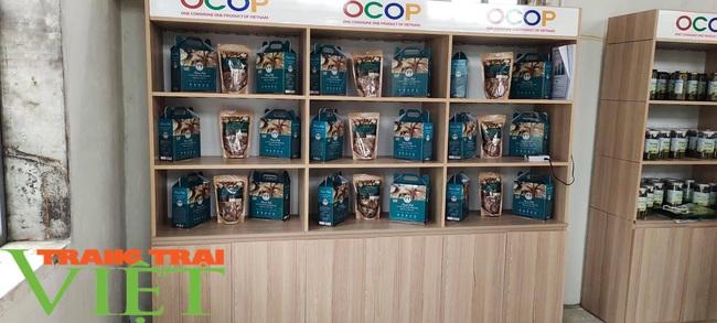 Khai trương điểm giới thiệu và bán sản phẩm OCOP tại huyện Quỳnh Nhai - Ảnh 6.