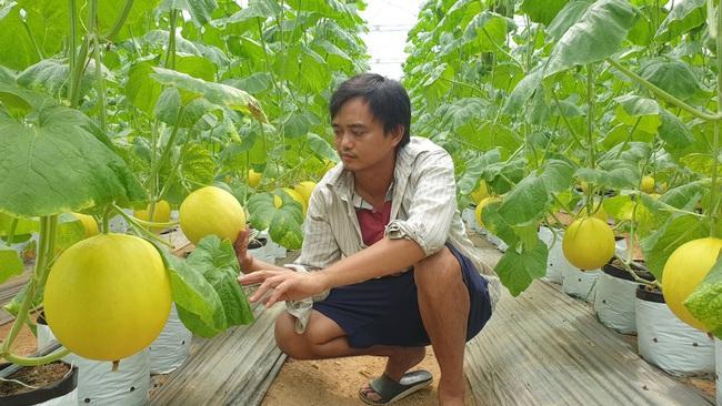 Mô hình nông nghiệp hiện đại ở Thanh Hóa:  Hiệu quả cao, bảo vệ môi trường - Ảnh 1.