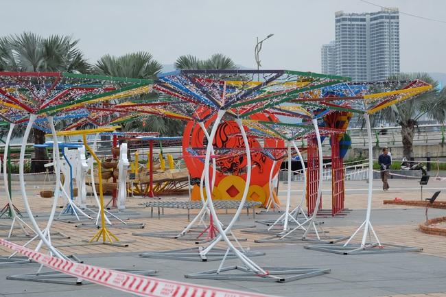 Cận cảnh đường hoa phục vụ Tết Nguyên đán hơn 10 tỷ đồng tại Đà Nẵng - Ảnh 3.