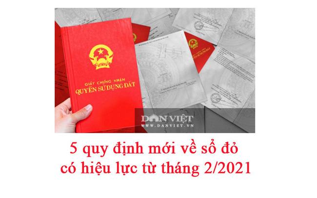 5 quy định mới về sổ đỏ có hiệu lực từ tháng 2/2021 - Ảnh 1.