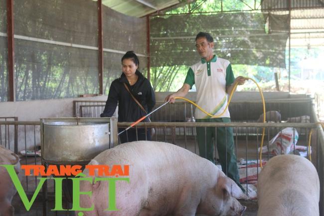 Hội nông dân Mai Sơn: Cầm tay chỉ việc, giúp nông dân làm giàu - Ảnh 1.