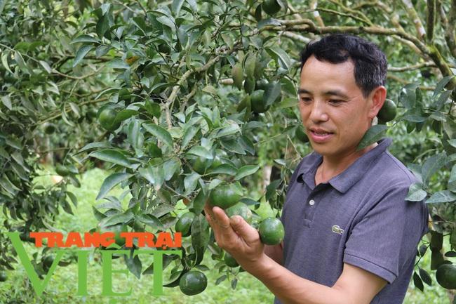 Xã Chiềng Cọ phấn đấu đạt chuẩn nông thôn mới nâng cao năm 2021 - Ảnh 1.