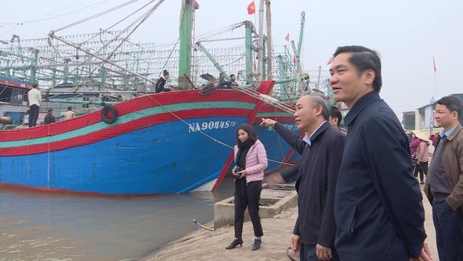 Nghệ An: Triển khai các biện pháp mạnh phòng, chống khai thác hải sản bất hợp pháp   - Ảnh 3.