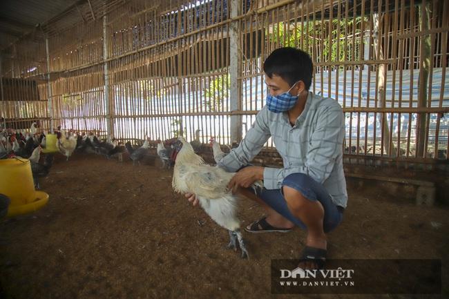 Hà Nội: 8X thu hàng trăm triệu từ chăn nuôi gà đẻ trứng - Ảnh 1.