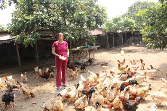Giải bài toán thu hút nông dân vào tổ chức Hội - Ảnh 1.