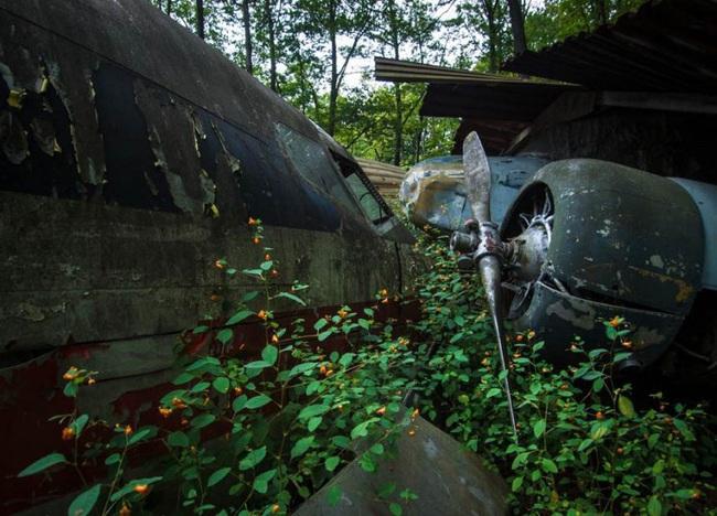 Tận mục nghĩa địa máy bay chiến đấu thời Thế chiến II - Ảnh 10.