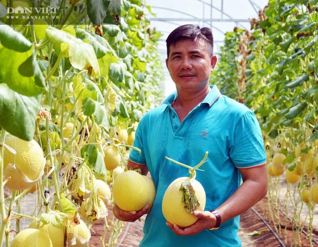 Cà Mau: Nhờ nguồn vốn Hội, nhiều nông dân thu tiền tỷ - Ảnh 1.