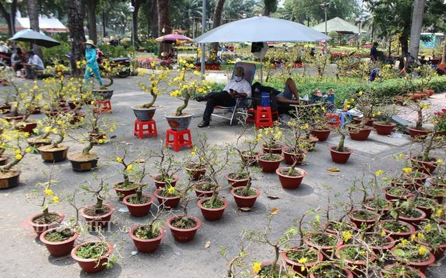 Hoa kiểng bày bán ở công viên Gia Định (quận Gò Vấp)