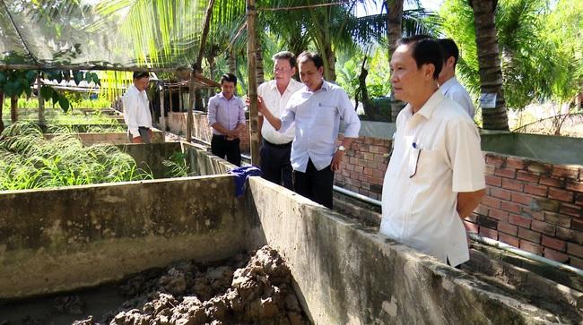 """Đồng Tháp: Nông dân rủ nhau """"chung 1 mái nhà"""" nuôi lươn đồng, chưa đầy 1 năm đã bán 15 tấn toàn con to - Ảnh 1."""